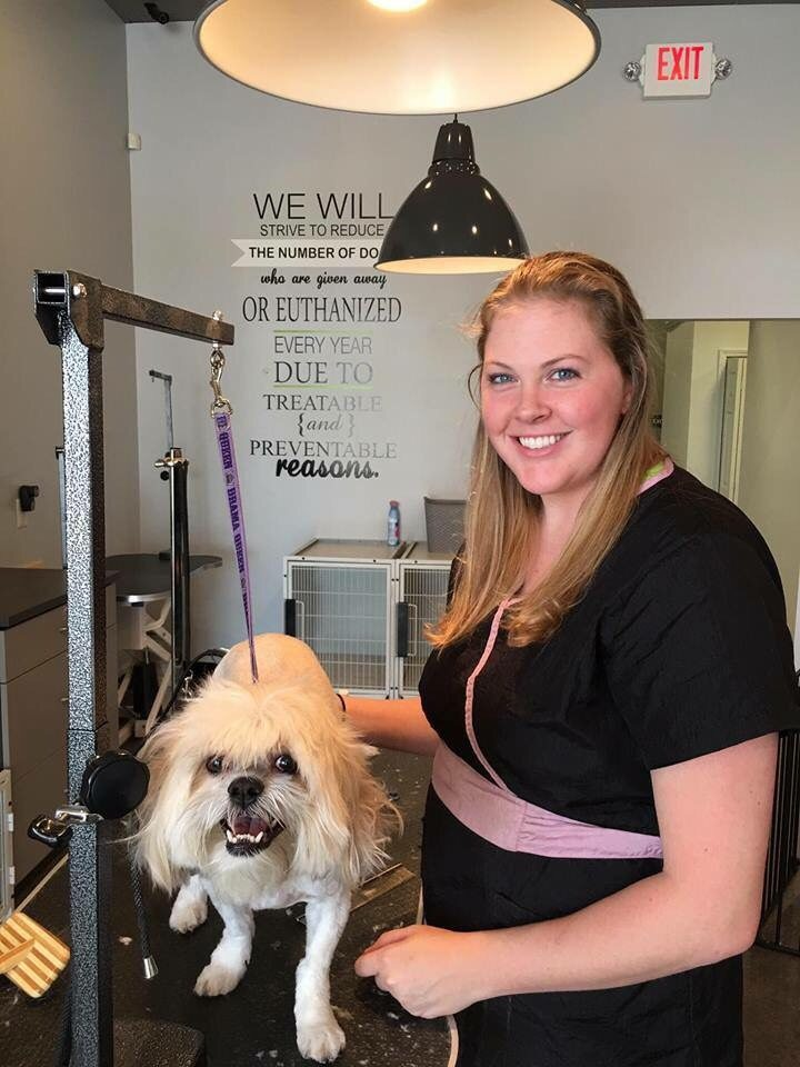 Marie Head Groomer at Wag N Tails