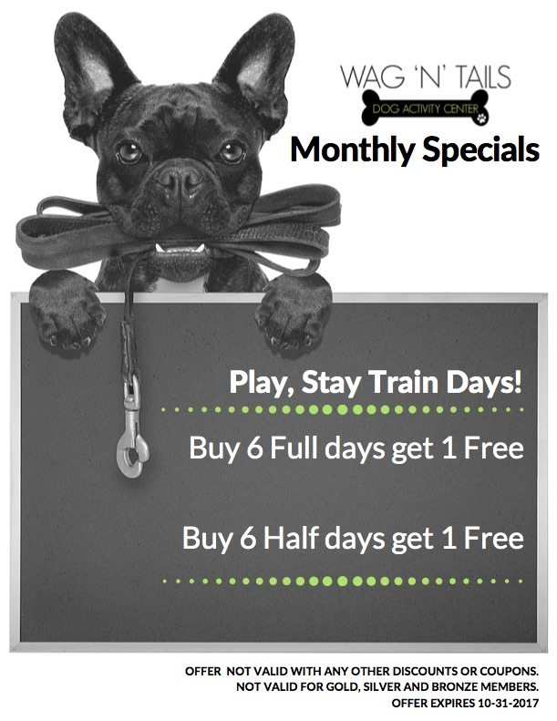 Monthly EMAIL SPECIALS OCTOBER 2