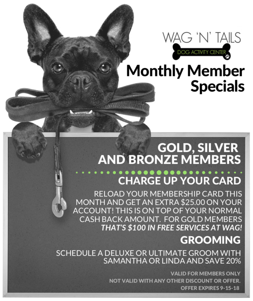 Monthly Member specials august 2018