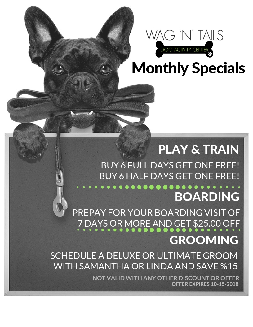 September EMAIL Specials Wag N Tails
