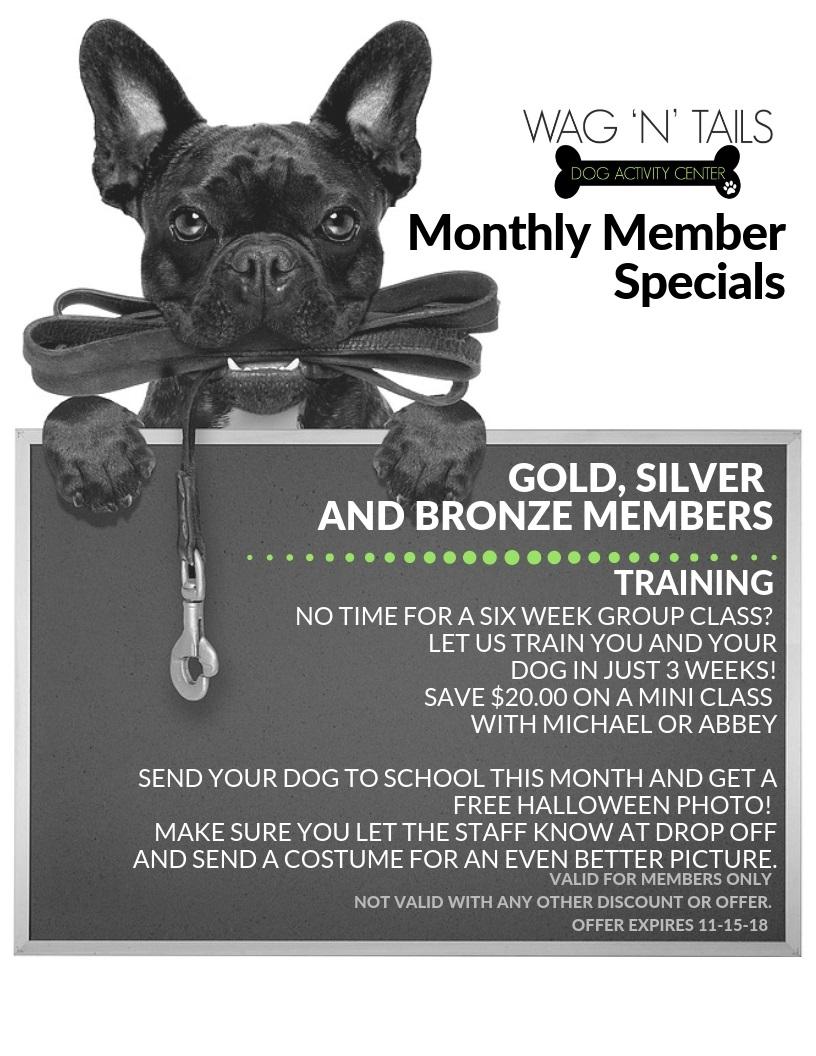 OCTOBER Member Specials