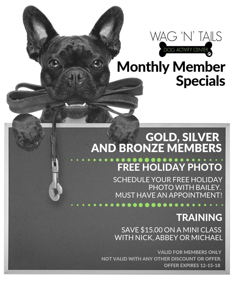 NOVEMBER Member Specials