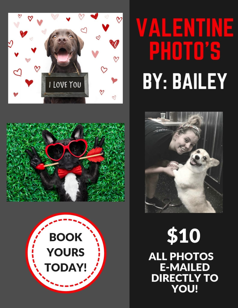VALENTINES PHOTOS BY BAILEY