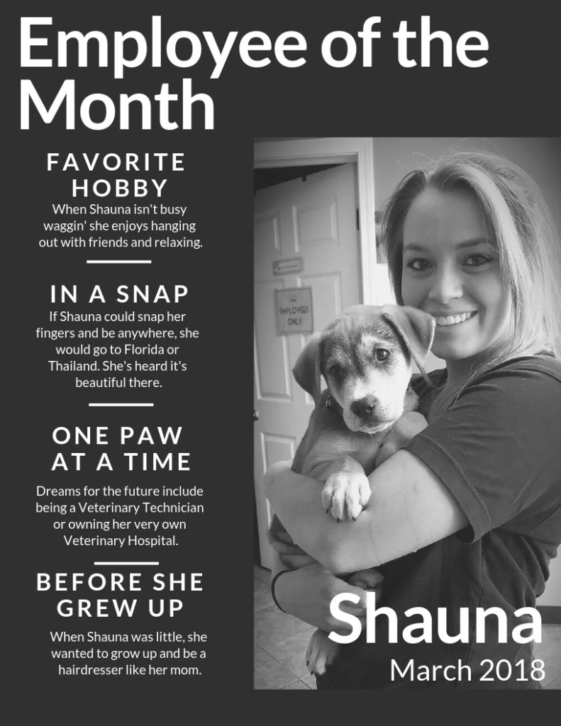 Empoyee of the Month at Wag N Tails March 2019