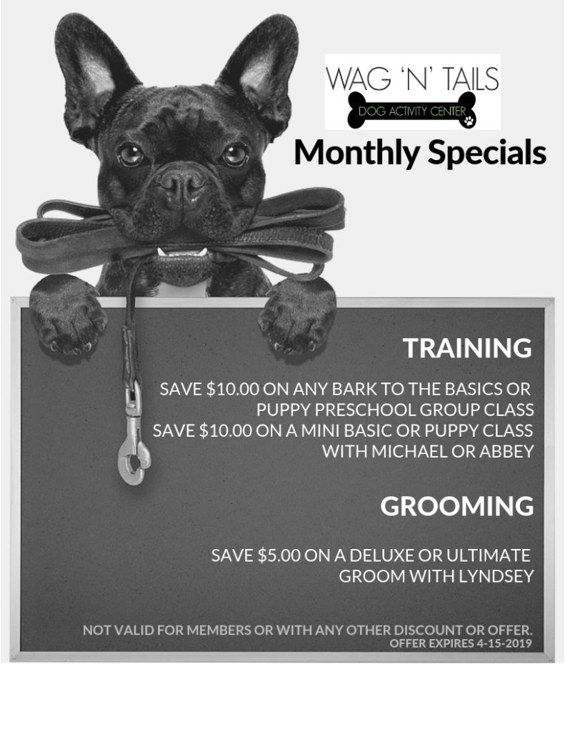 MARCH 19 EMAIL Specials