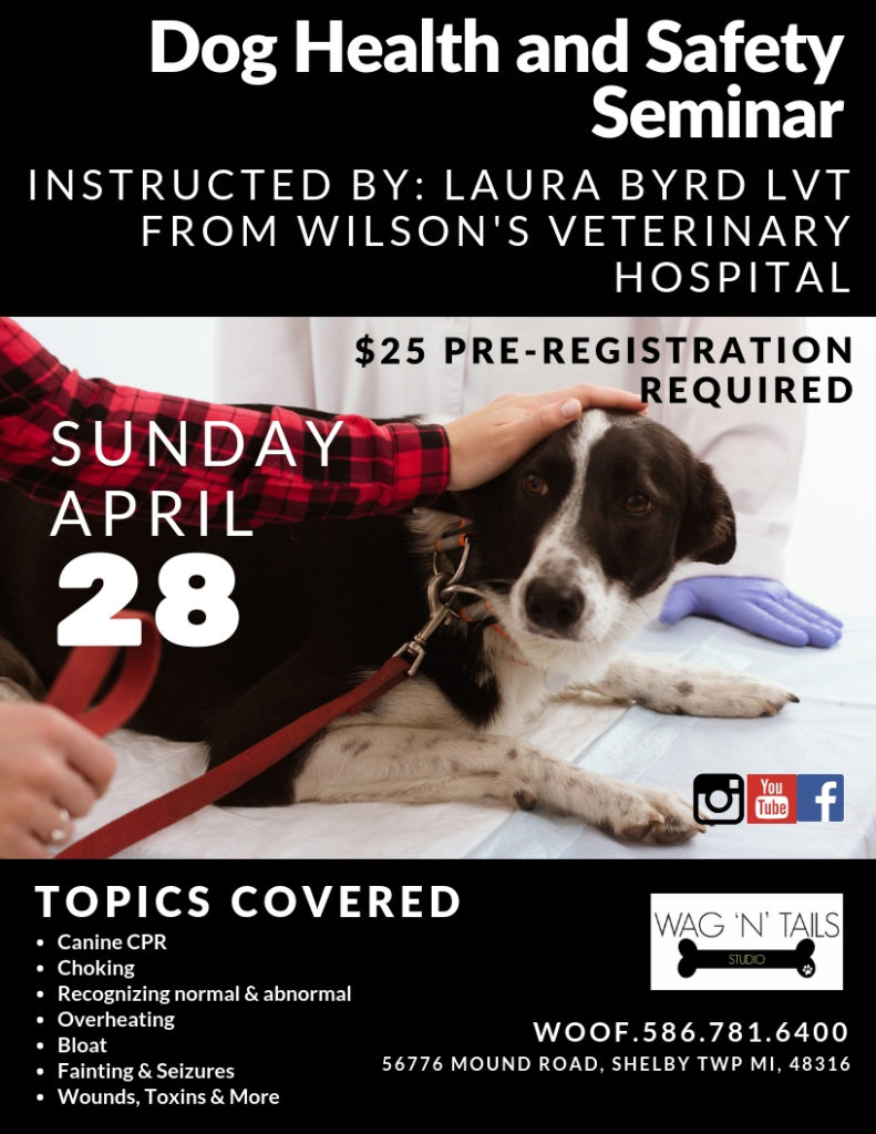 Dog Health and Safety Seminar